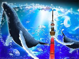 小笠原から実物大クジラがやってきた_2.jpg