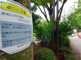 デング熱_代々木公園.jpg
